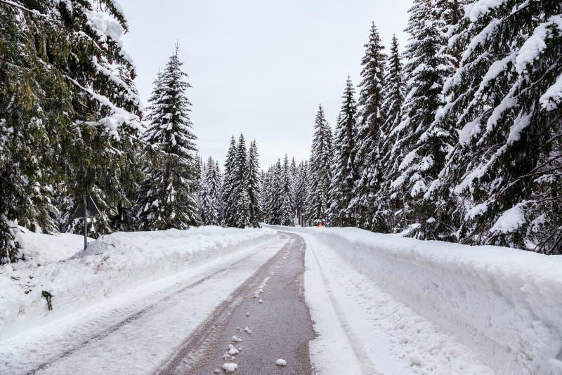 Download Śnieżna zimy droga zdjęcie stock. Obraz złożonej z sosna - 53789316