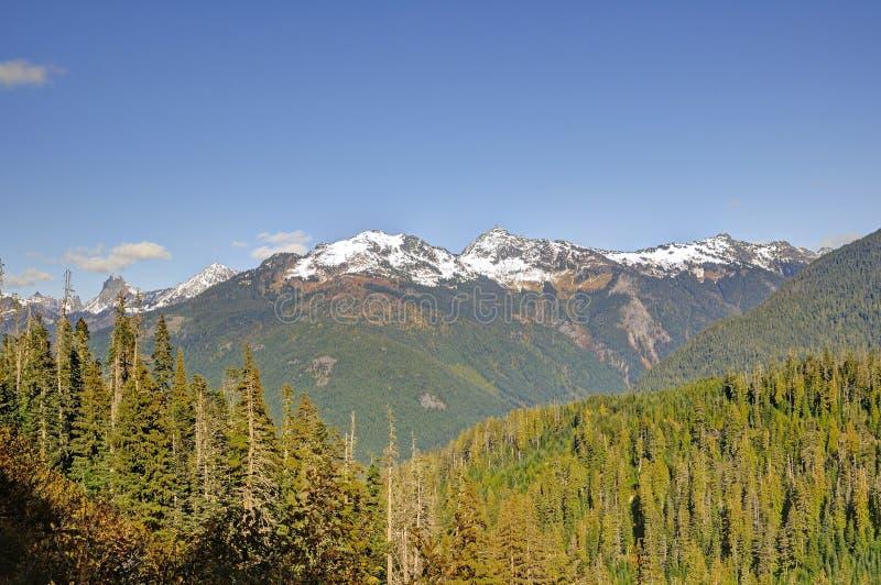 Śnieżne góry w Mt Piekarniany teren obraz stock