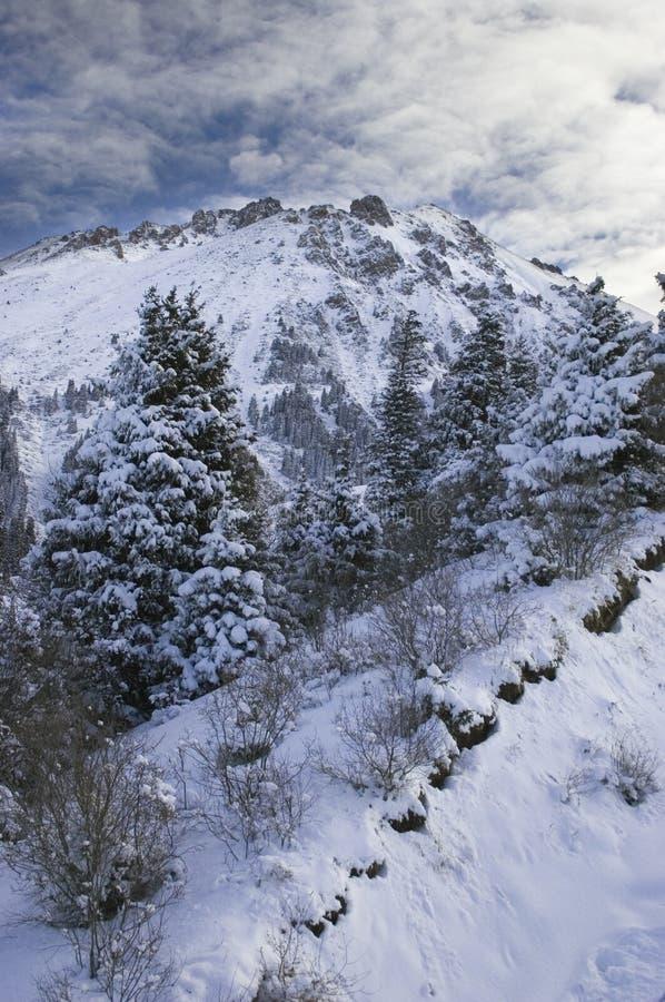 śnieżne Kazakhstan góry obrazy stock