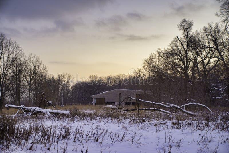 Śnieżni drzewa w Ontario's Ojibway prowincjonału parku podczas wi obrazy stock