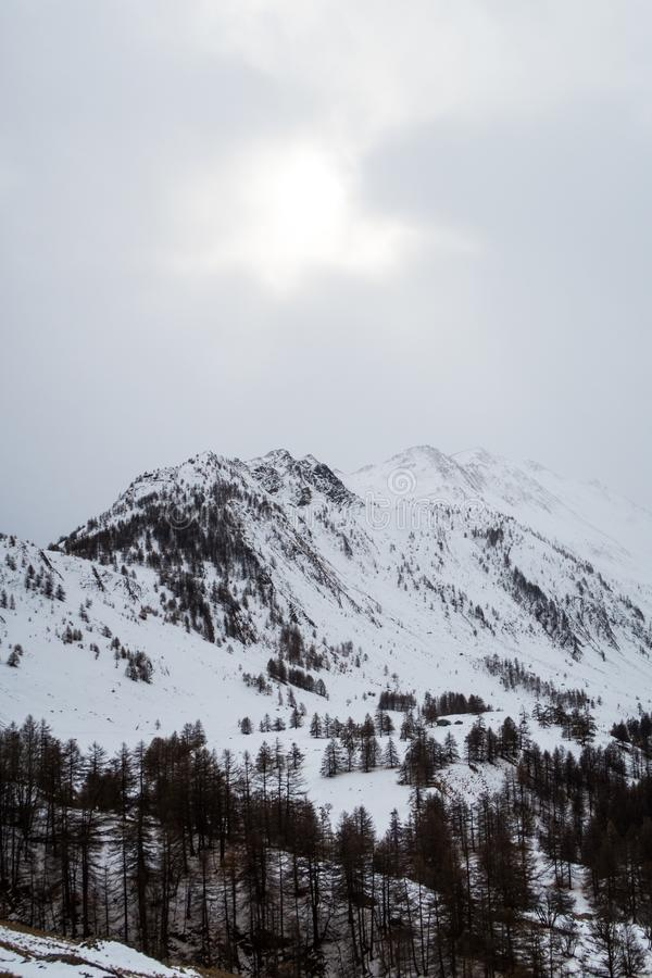 Śnieżni Europejscy Alps podczas zimy fotografia royalty free