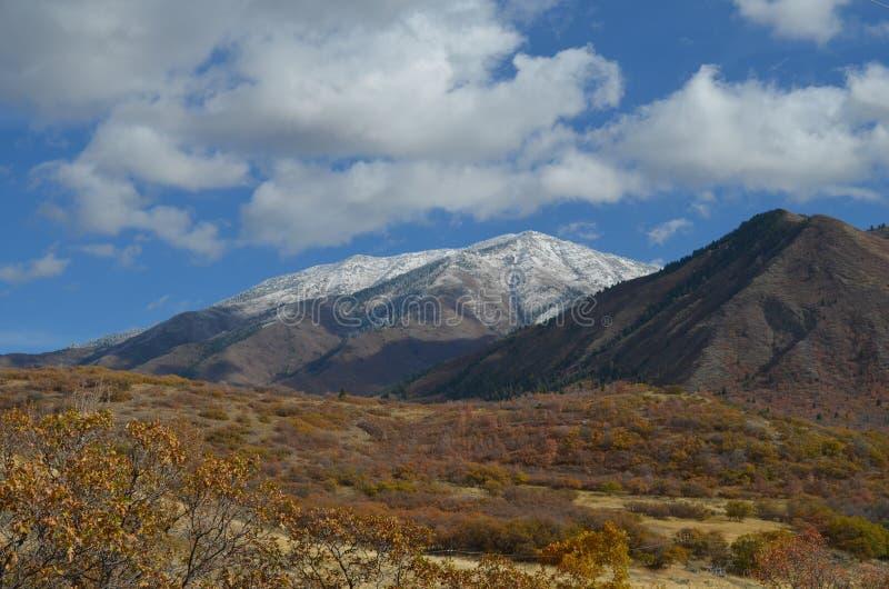 Śnieżni szczyty Utah fotografia royalty free