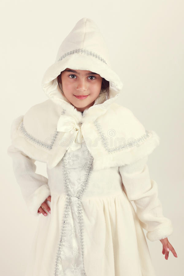 Śnieżny biel obraz royalty free
