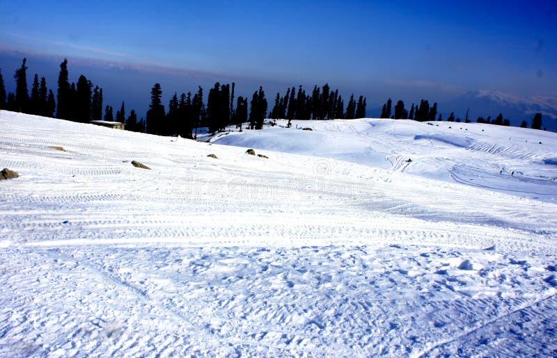Śnieżny biel obraz stock