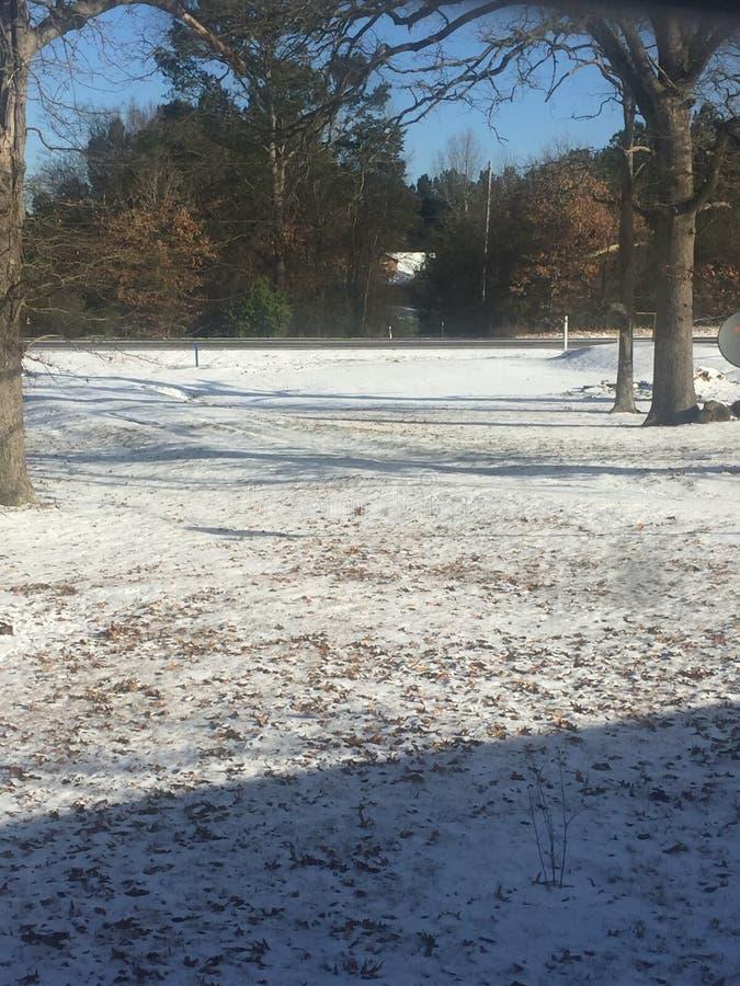 Śnieżny dzień przy Wschodnim Teksas obraz royalty free