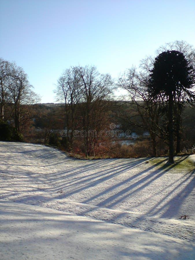 Śnieżny dzień w opóźnionej wiośnie zdjęcia stock