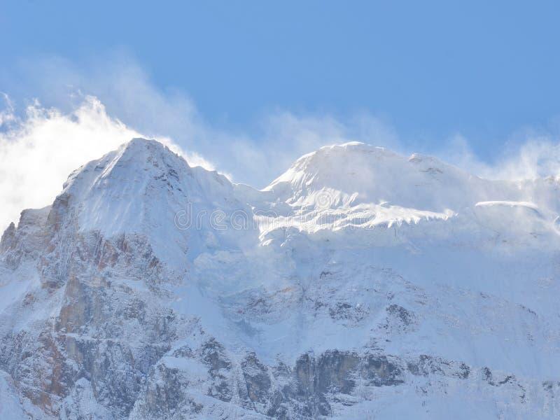 Śnieżny halny szczyt folował z śniegu krajobrazem w jasnym niebieskim niebie fotografia royalty free