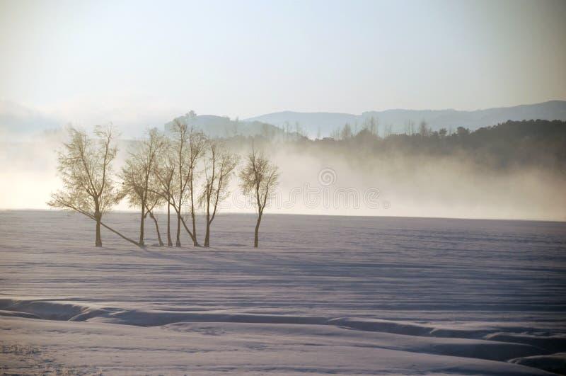Śnieżny jezioro obraz royalty free