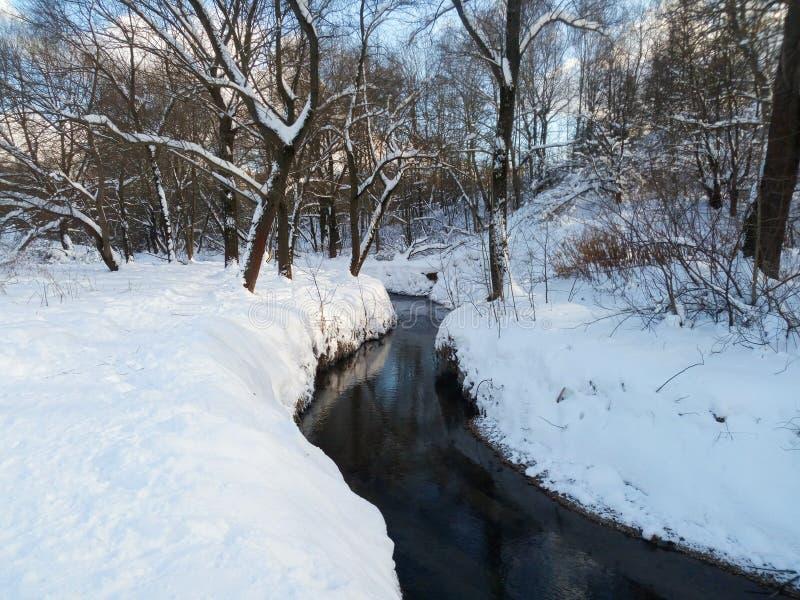Śnieżny krajobraz Ramenka rzeka w pogodnym zima dniu moscow Rosja fotografia royalty free