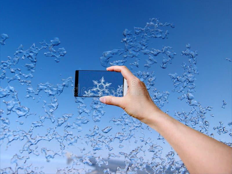 Śnieżny kryształ zdjęcia royalty free