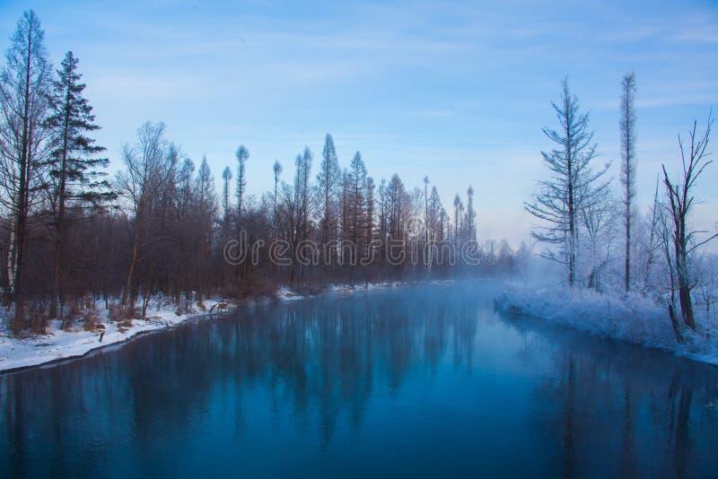 Śnieżny landscpe fotografia stock