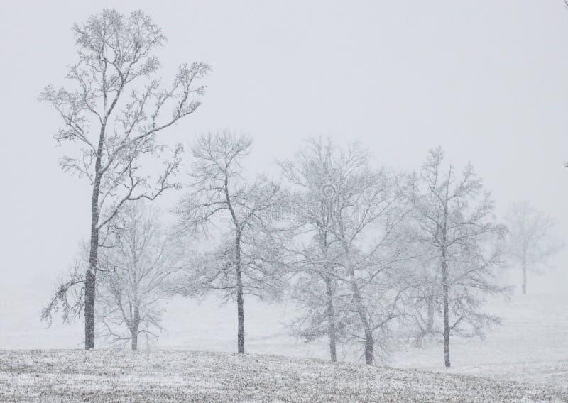 śnieżny południowy zdjęcie stock