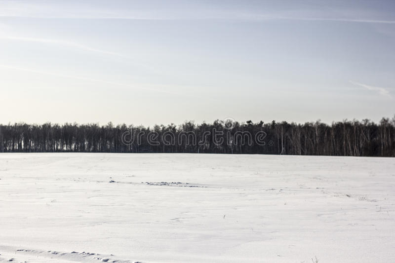 Śnieżny pole i niebo fotografia stock