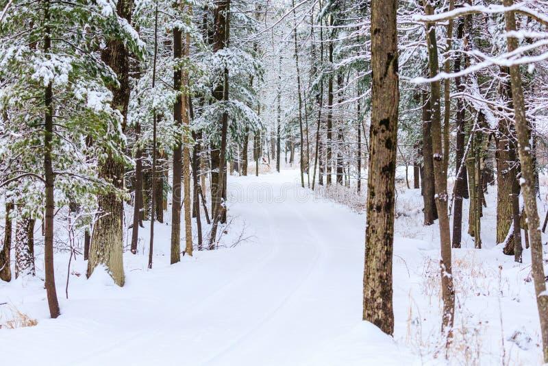 Śnieżny Prowadnikowy sposób obrazy stock