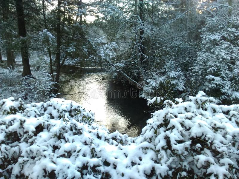Śnieżny strumień fotografia royalty free
