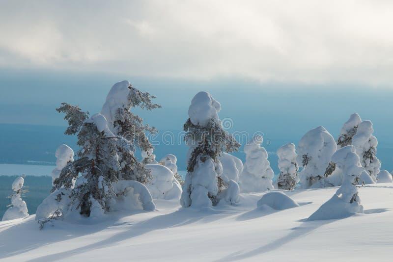 Śnieżny szczyt w Fińskim Lapland obrazy royalty free