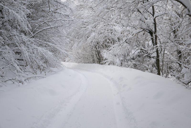 Śnieżny tunel zdjęcie royalty free