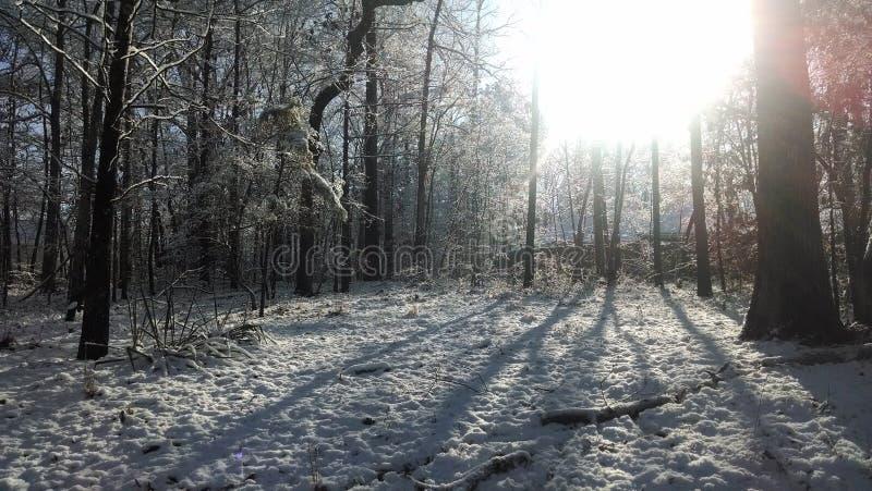 Śnieżny wschód słońca obrazy royalty free