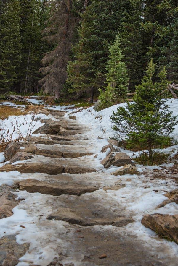 Śnieżny wycieczkuje ślad zdjęcie stock
