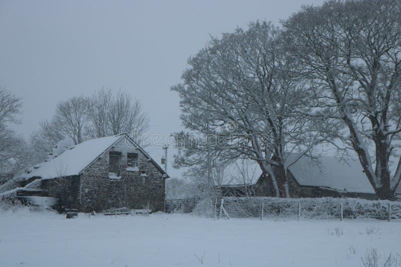 Śnieżny zimy gospodarstwa rolnego dom zdjęcie stock