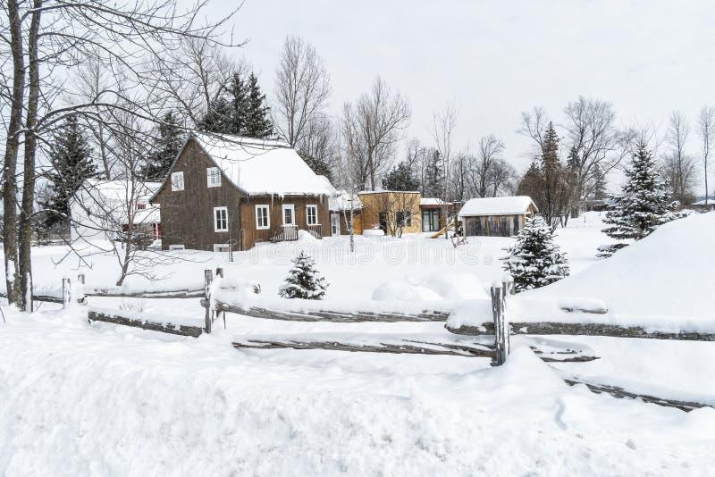 Śnieżny zimy sceny cedru ogrodzenie obrazy royalty free