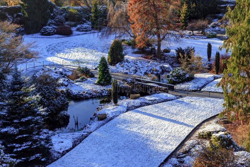 Śnieżnych pokryw łupu Wielki ogród w królowej Elizabeth parku fotografia royalty free