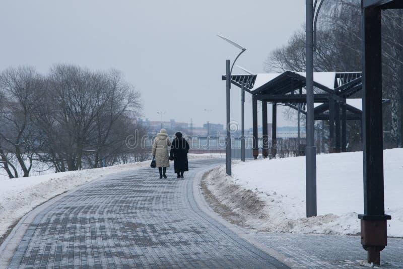 Śnieżyści drzewa i ławki w miasto parku fotografia royalty free