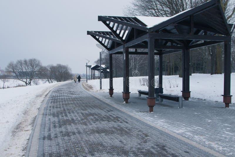 Śnieżyści drzewa i ławki w miasto parku fotografia stock