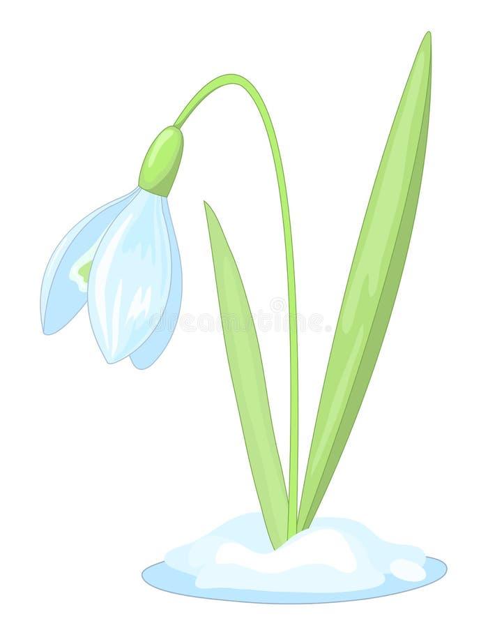 śnieżyczka ilustracja wektor