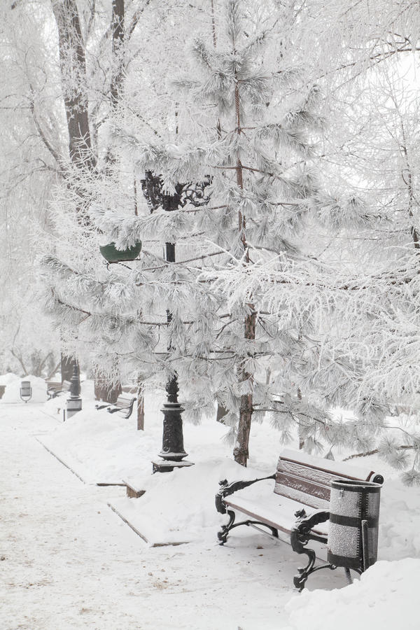 Śnieżysta ławka w miasto parku zdjęcia royalty free
