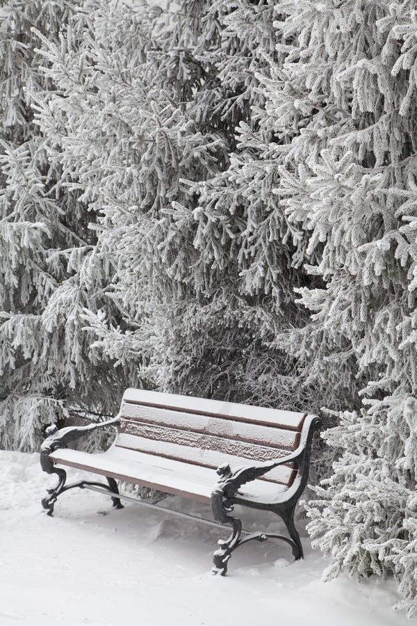 Śnieżysta ławka w miasto parku obrazy stock