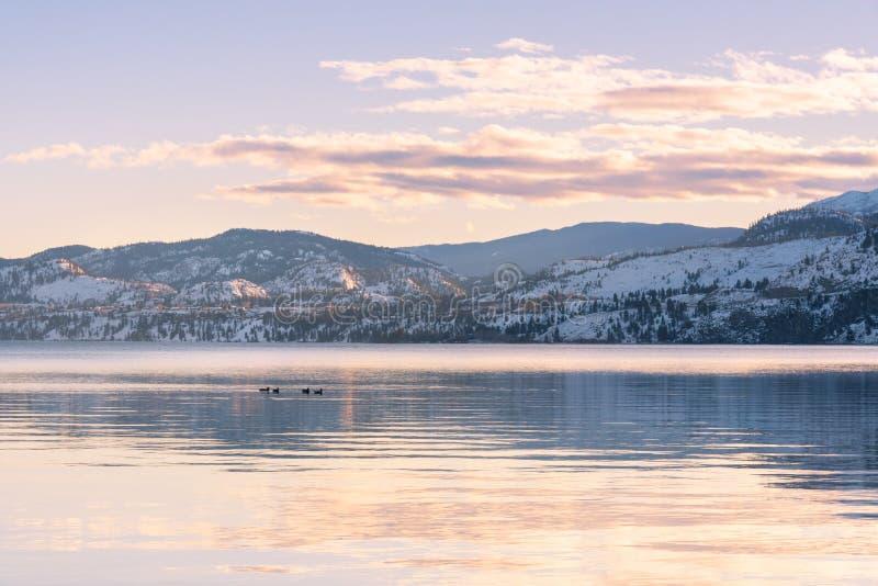 Śnieżyste góry i zmierzchów kolory odbijali w spokojnych wodach jezioro w zimie zdjęcie stock