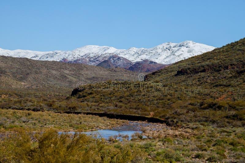 Śnieżyste góry w południowy zachód pustyni obraz royalty free