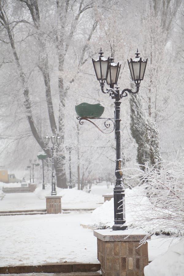 Śnieżyste latarnie uliczne i drzewa na miasto bulwarze obrazy royalty free