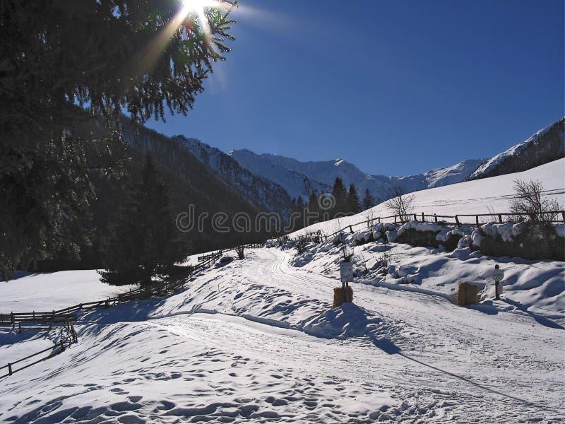Śnieżysty krajobraz z przecinającego kraju narty śladem zdjęcie royalty free