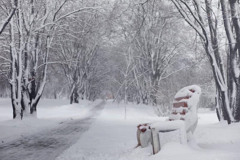 Śnieżysty zima park, ławki i Park i molo dla karmić obraz stock