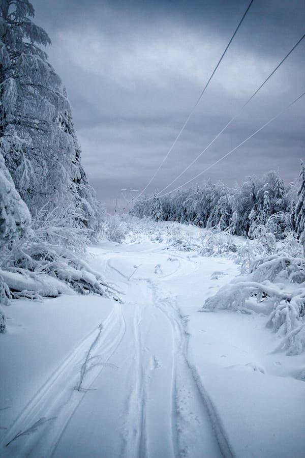 Śniegów depozyty i brei nagromadzenie na wysokim woltażu depeszują śnieżysta lasowa droga fotografia stock