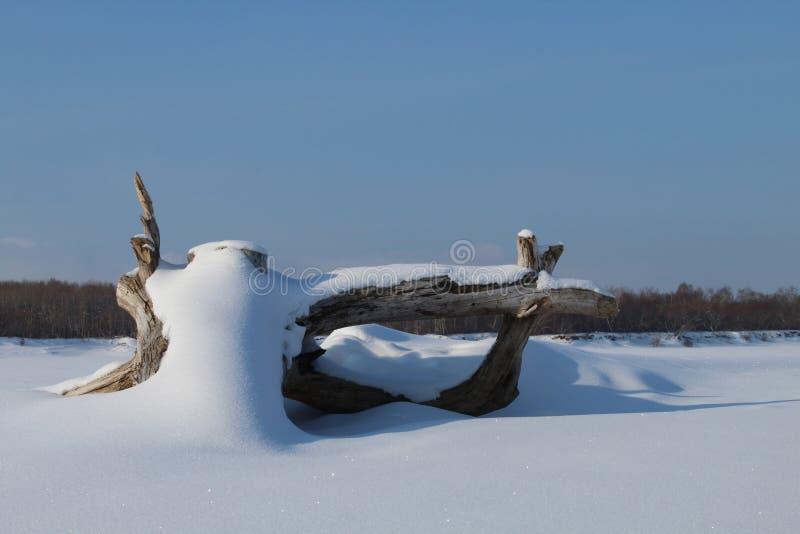 Śniegów wzory na ziemi obrazy royalty free