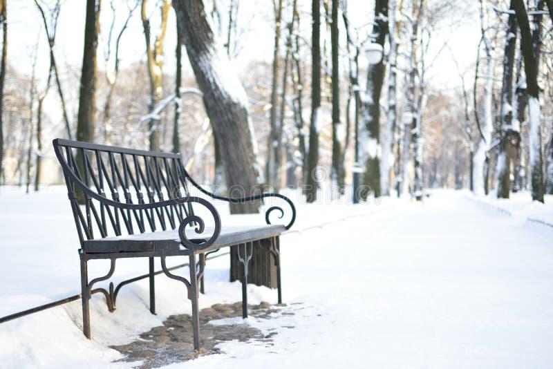 śnieg obraz royalty free