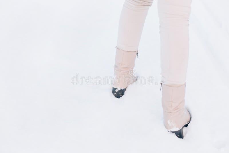 Śnieg biały w czasie wędrówki zimą fotografia stock