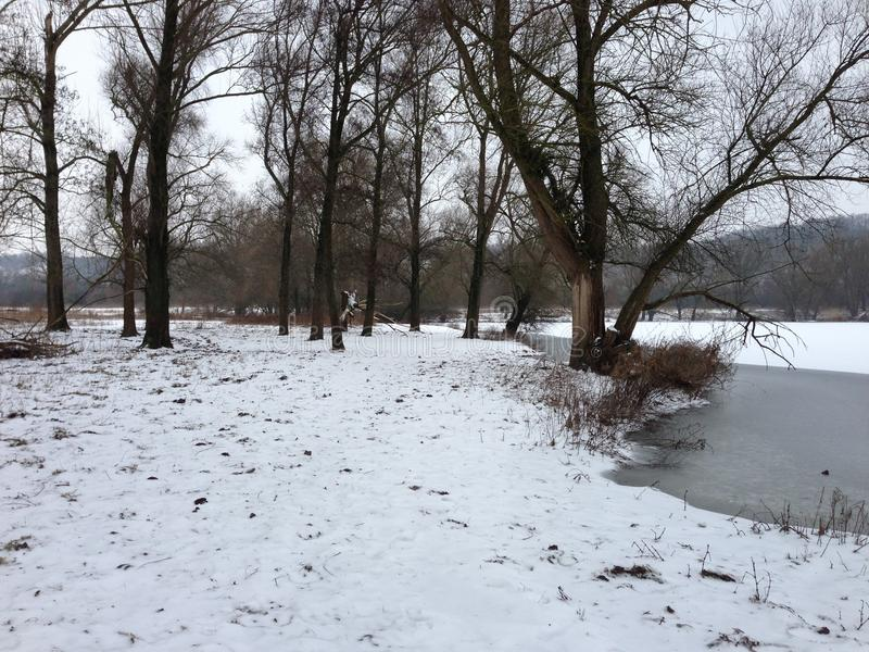 Śnieg eijsderbeemden fotografia royalty free