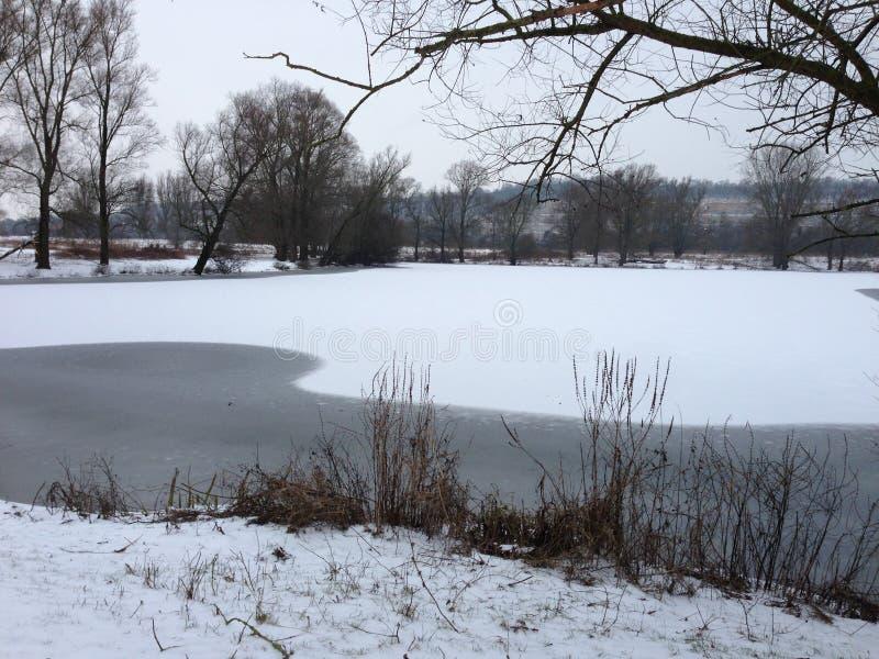 Śnieg eijsderbeemden zdjęcia royalty free