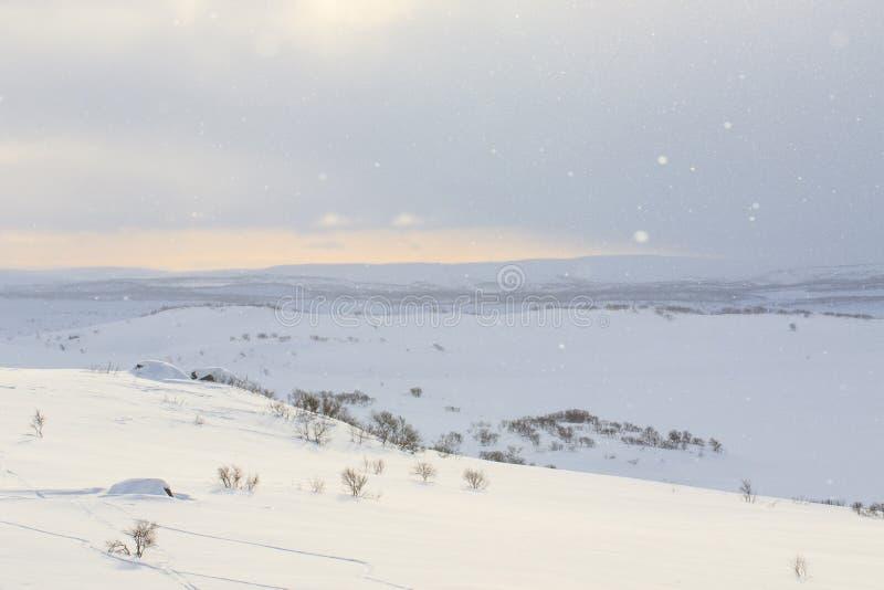 Śnieg i słońce, zim śnieżne góry z lasowych drzew krajobrazem Zima czas, Rosja, piękna dzika natura północni wzgórza Jest fotografia royalty free