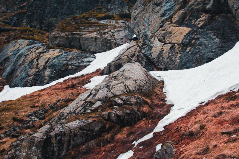 Śnieg kłama na ziemi w górach wśród czerwonej trawy i fotografia royalty free