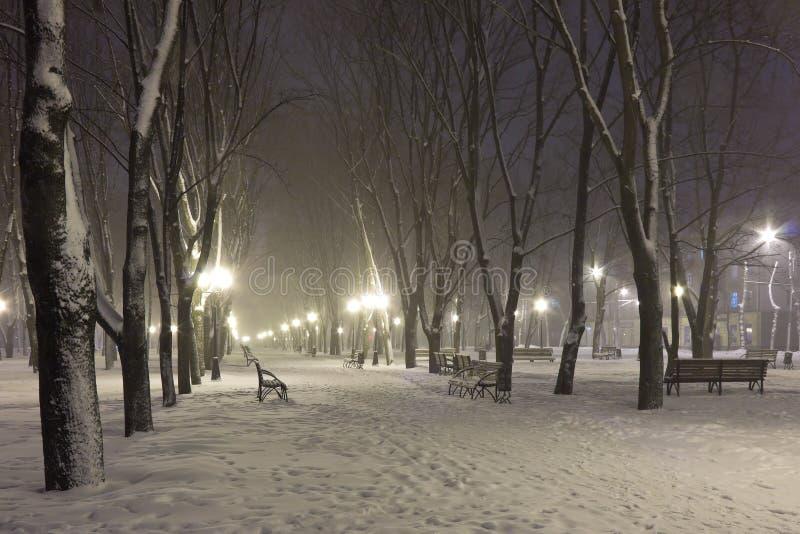 Śnieg na bulwarze w zimy zimna nocy obrazy royalty free