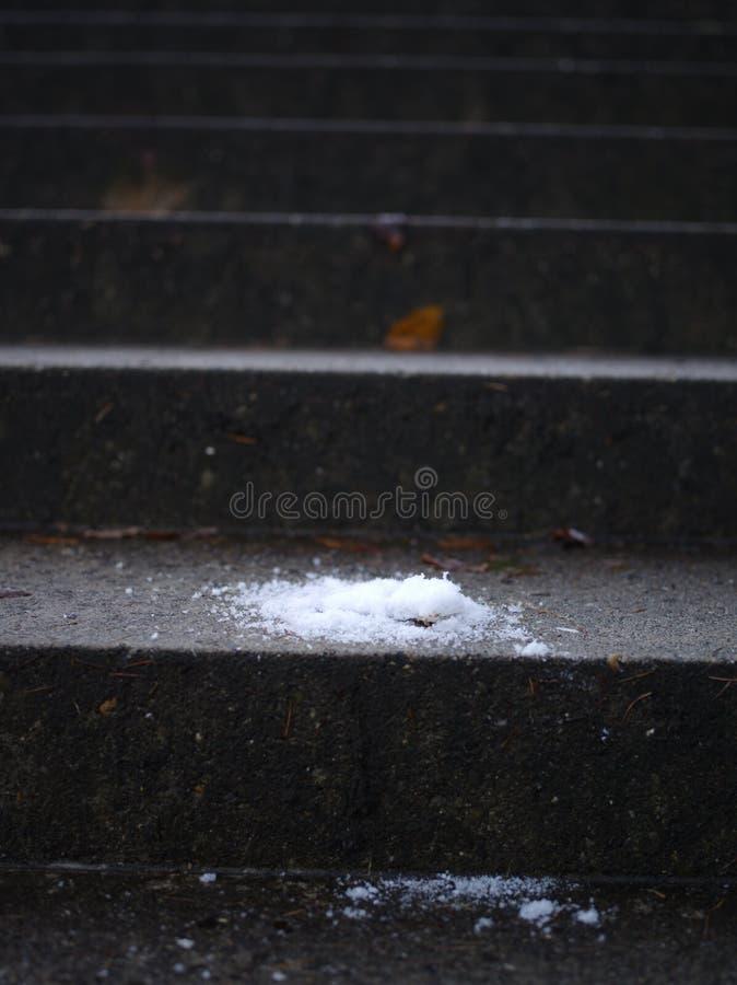 Śnieg na lodowatym schody fotografia royalty free