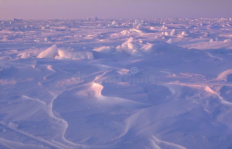 śnieg na lodzie ilustracja wektor