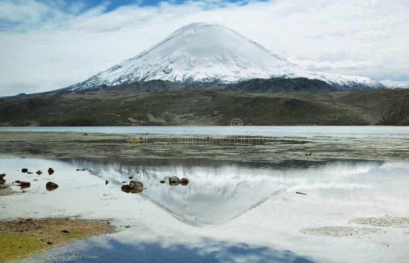 Śnieg nakrywać wysokie góry odbijać w Jeziornym Chungara obrazy stock