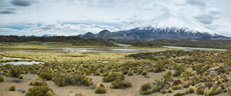 Śnieg nakrywający Parinacota wulkan fotografia stock