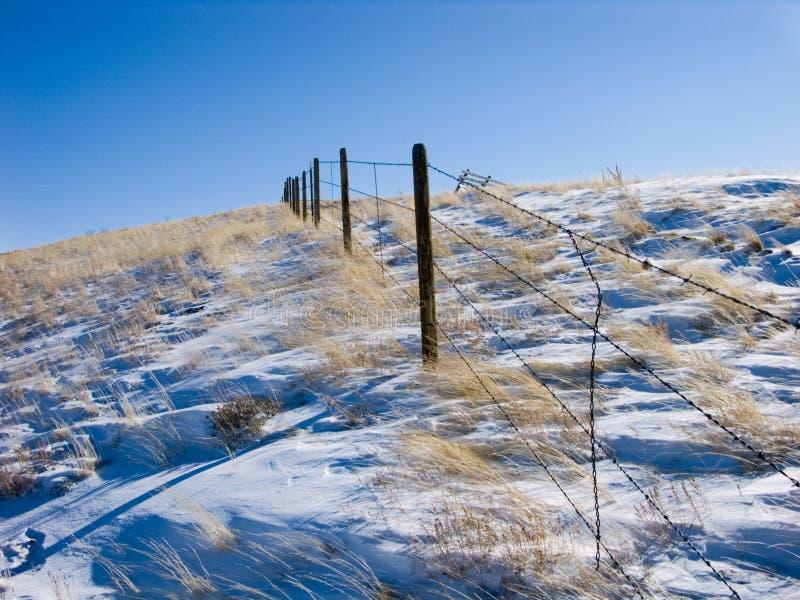 śnieg płotu obraz stock